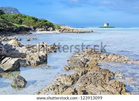 detail of Stintino seaboard rocks, Sardinia