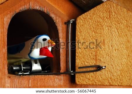detail of swiss cuckoo clock