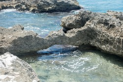 Detail of the Monk's Bath limestone tidal pool with natural bridge on the Caribbean Sea coastline in Fredericksted on St. Croix in the US Virgin Islands