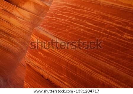Detail of the  patterned rocks. The Wave, Vermilion North Coyote Buttes, Paria Canyon-Vermilion Cliffs Wilderness, Vermilion National Monument, Arizona, USA.