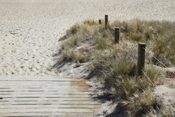 Detail of the steps and dunes leading to the sandy beach at Mt Maunganui, New Zealand