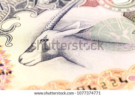 detail of 50 united arab emirates dirham bank note #1077374771