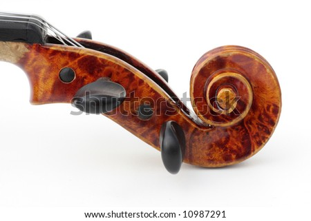 detail of violin, on white