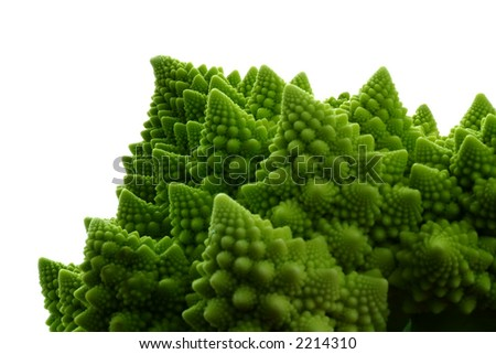 detail shot of romanesco cauliflower, isolated on white