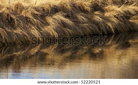 Detail view of the edge of a lake on the Colorado prairie with reflections of golden grasses just after winter snow has thawed.