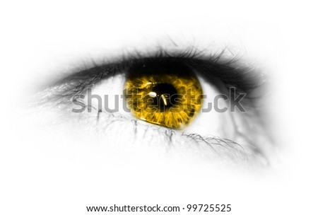Detailed close-up view of the human eye