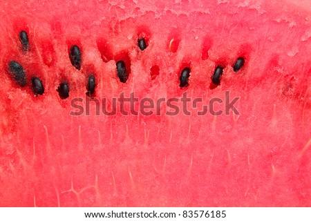 detailed closeup of watermelon - stock photo