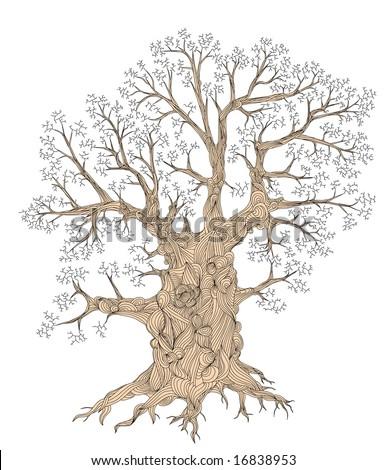 Detailed illustration of a leafless oak tree
