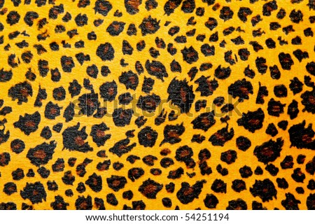 Detailed pattern of leopard animal print texture