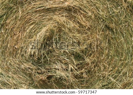 Detailed view of a circle hay bale