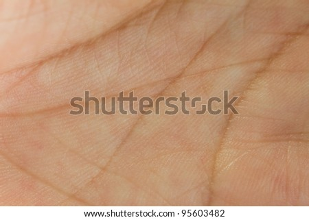 Detailed view of hand palm