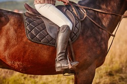Detailed view of the rider's shoes and costume with spurs and stirrups, saddle and harness