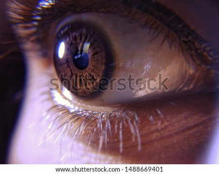 Details and pattern of a eye.