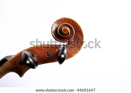 Details of violin head