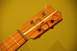 Detaisl of ukelele  headstock with olive background