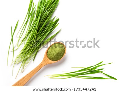 Detox Food Superfood Isolated Green Barley Sprout grass and a Spoonful of Powder, Flat Lay. Space for Text on the white. Stockfoto ©