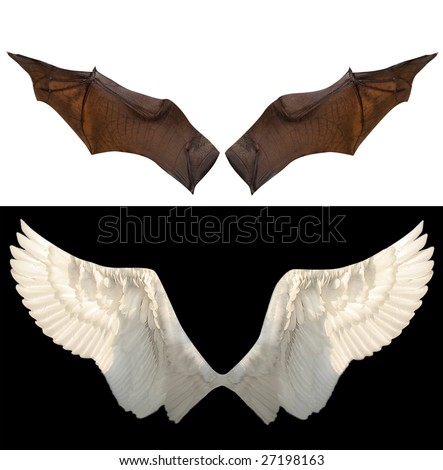 devil and angel wings