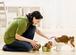 Devoted woman kneeling and feeding hungry pet dog