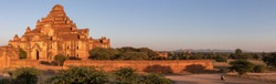Dhammayangyi Temple: the only pyramid shape temple in Bagan. Sunset light hitting on a buddhist temple. Panoramic view. Bagan, Myanmar - Burma, South east Asia