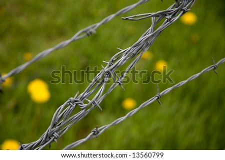 diagonal barbed wire