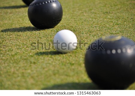 Diagonal line of black lawn bowls and a white jack on green turf.  #1315463063