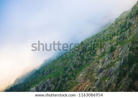 Diagonal mountainside with forest in morning fog close up. Giant mountain in haze. Early sun is shining through mist. Overcast weather above rocks. Atmospheric mountain landscape of majestic nature. #1163086954