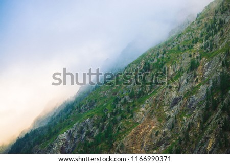 Diagonal mountainside with forest in morning fog close up. Giant mountain in haze. Early sun is shining through mist. Overcast weather above rocks. Atmospheric mountain landscape of majestic nature. #1166990371