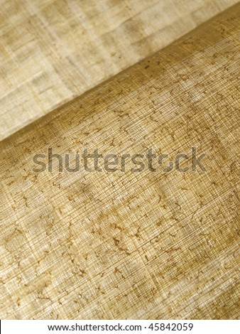 diagonally curled up sheets of Egyptian papyrus parchment