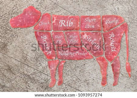 diagram cutting cow meat  fresh raw beef cuts  butcher shop  on bare cement