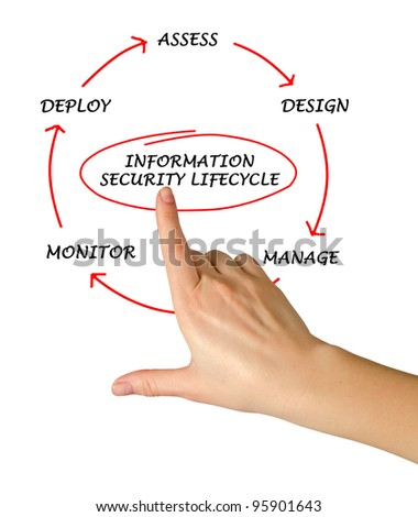 Diagram of information security life cycle