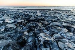 Diamond Beach at the Glacier Lagoon Jökulsarlon in Iceland, Europe