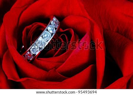 Diamond ring inside red rose taken closeup