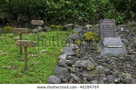 "dian fossey's grave besides her most beloved gorillas (known from the movie ""gorillas in the mist"")"