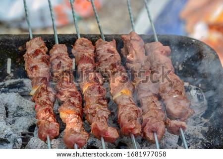 Diced meat barbecue pleasure. Turkish style Shish kebab. Photo stock ©