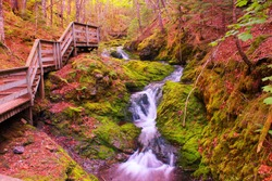 Dickson Falls in Fundy National park in New Brunswick