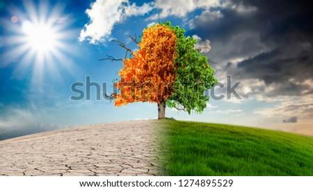 Die Auswirkungen des Klimawandels