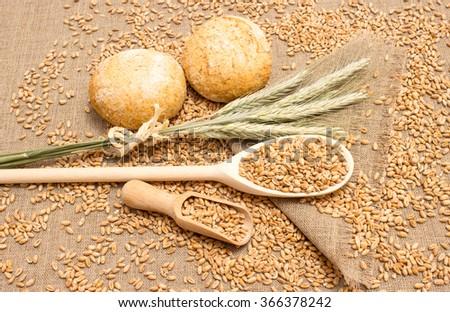 diet supplements wheat grain on canvas  #366378242