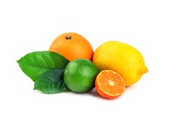 different citrus fruit isolated on white background