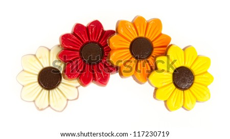 Different colors of chocolate flowers isolated on white