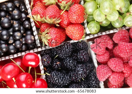 Different colourful berries in the box