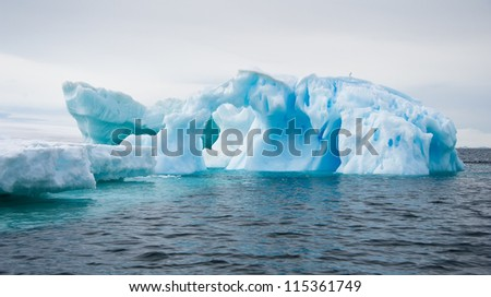 Different forms of iceberg in Antarctic waters