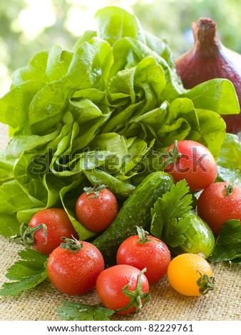 Different fresh vegetables on natural background. Selective focus