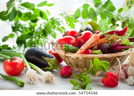 Different fresh vegetables on the table