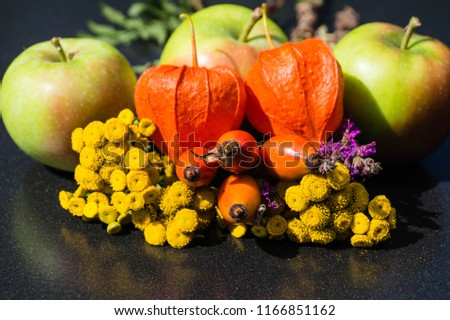 Different fruits and berries as thanksgiving decoration #1166851162