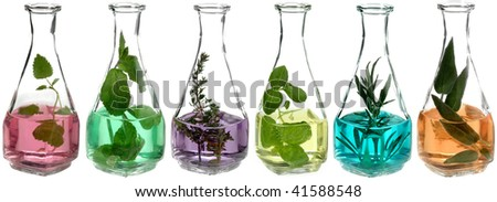 different herbs in glass bottles with colored liquid