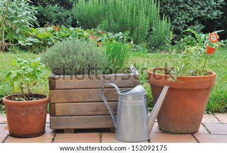 different herbs in pots placed on a terrace