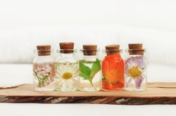 Different holistic herbs in oil bottles in a row on a wooden plank, light background. Chamomile, calendula, basil herbal aroma therapy.