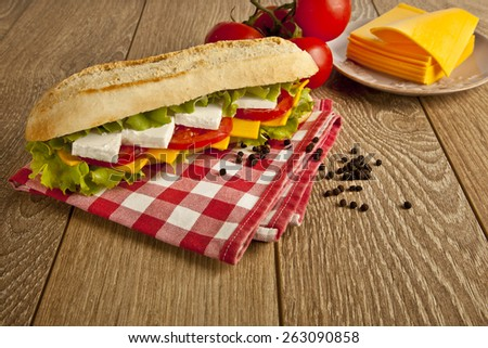 Different kind of cheese sandwich and tomatoes with concept background