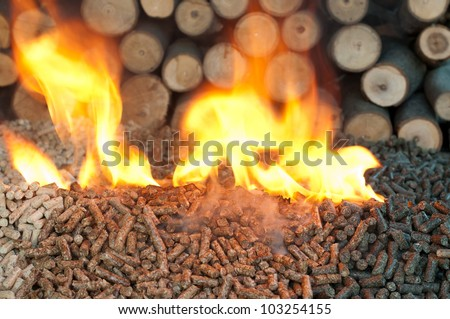 Different kind of pellet- oak, pine,sunflower, in flames. Selective focus on the heap.