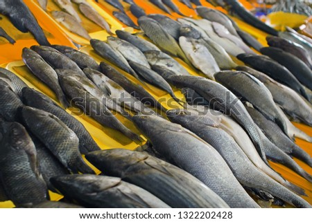 Different kinds of fresh fish display on sale at sea food market in Chorrillos, Lima, Perú #1322202428